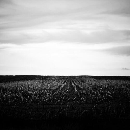 Badlands-National-Park-Dead-Field