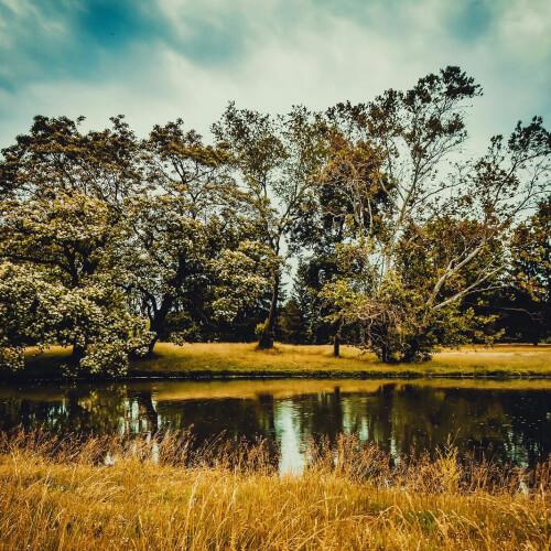 Cuyahoga-Valley-National-Park-Pond
