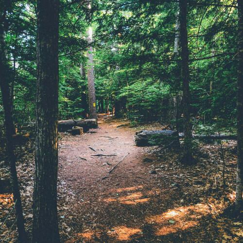 Echo-Lake-Trail