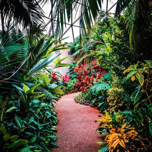 Greater-Des-Moines-Botanical-Gardens-Interior