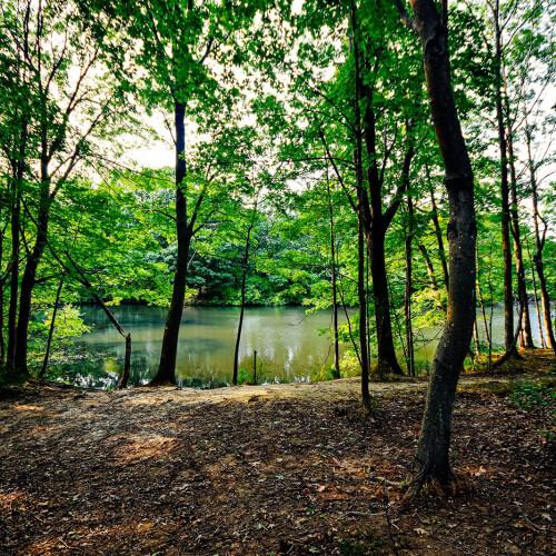Hinckley-Park-Overview