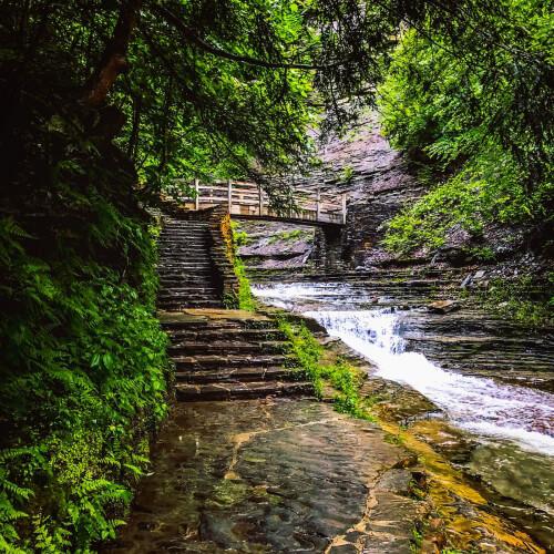 Stony-Brook-State-Park-Pathway